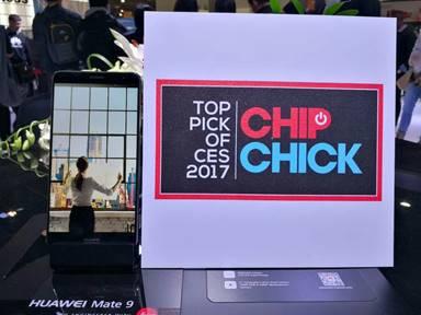 Chip Chick