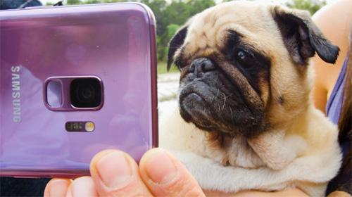Android vest Samsung, BuzzFeed i Dodo počinju saradnju